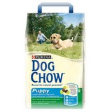 Purina Dog Chow Puppy Junior Large Breed Chicken and Rice \ Пурина сух. для собак крупных пород